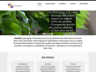 Acanthe location de plantes