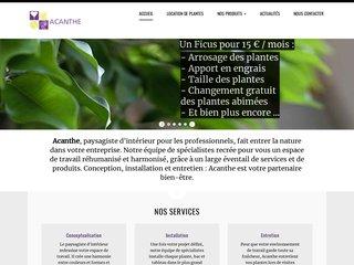 Acanthe location de plantes