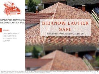 Rénovation de toiture à Albi