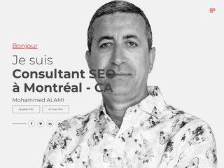 Mozalami site de Mohammed ALAMI consultant SEO