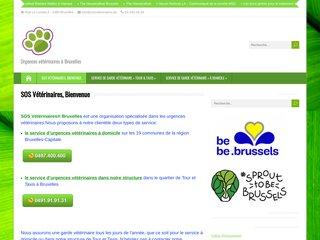 Urgences vétérinaires à Bruxelles