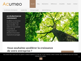 Le coaching de dirigeants par Acumeo