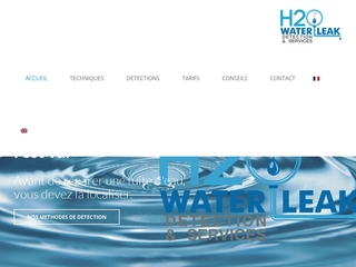 H2O détection