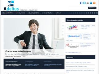 Adelius : ESN spécialisée dans la production IT