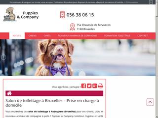 Toilettage des animaux de compagnie à Bruxelles, Puppies & Company