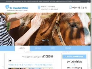 Des soins médicaux aux animaux de compagnie à Hainaut