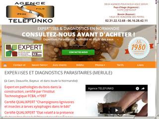 Expertises : Agence Telefunko à SAINTE HONORINE DES PERTES (14)