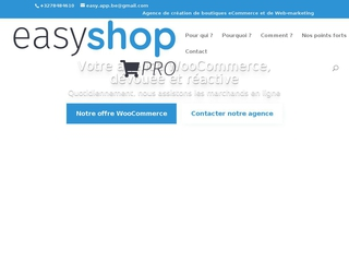 Easy Shop: agence web