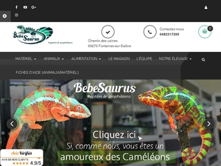 Serpent des blés - Bebesaurus