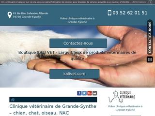 Votre Clinique Vétérinaire à Grande Synthe