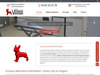 Médecine vétérinaire à Ventabren