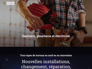 Sani Elec Services