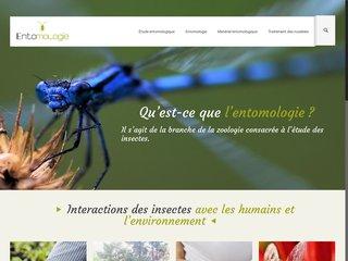 Tout sur l'entomologie