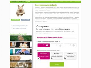 Assurance santé pour lapin