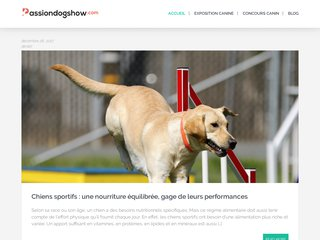 Passiondogshow : un site d'informations sur les chiens