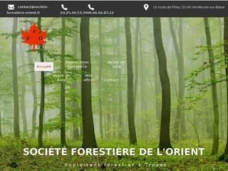 Société Forestière de l'Orient