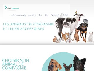 Animal Showroom, le blog des animaux de compagnie