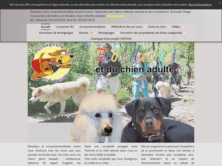 éducateur canin Alsace