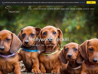 Hollywood Teckel, Éleveur de teckel