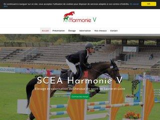 SCEA harmonie V - Elevage et valorisation de chevaux de sport