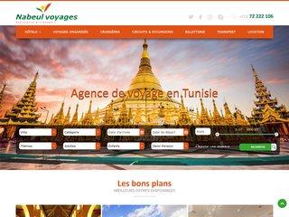 Voyage et Transfert en Tunisie pas cher
