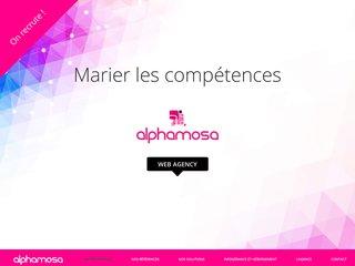 Agence de création de sites Alphamosa
