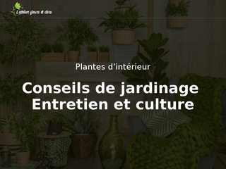 L'aménagement intérieur avec les plantes, les fleurs et les articles de décoration