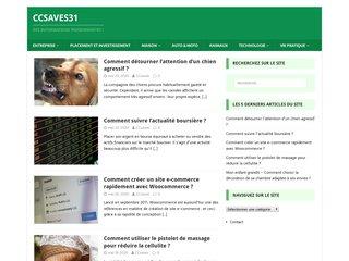 ccsaves31