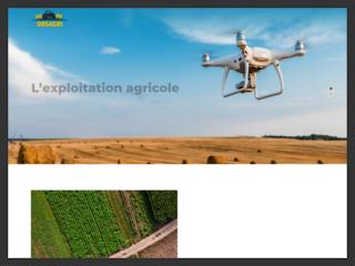 En savoir plus sur la production agricole du moment