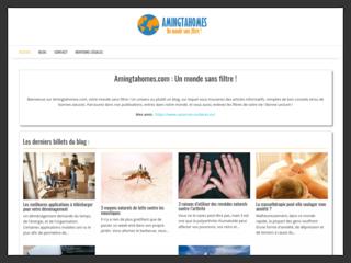 Amingtahomes, meilleur blog d'informations