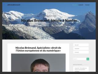 Nicolas bremand Nantes