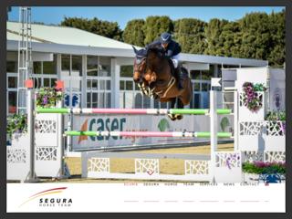 Segura Horse Team - Une écurie privée à votre service