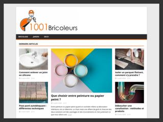 1001 Bricoleurs