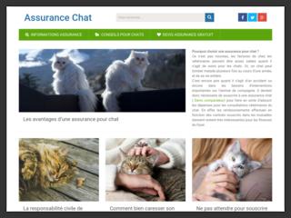 Des recommandations pour choisir votre assurance chat
