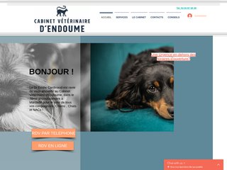 Cabinet vétérinaire Marseille