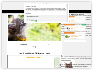 Espace chats