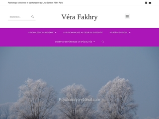 Présentation de l'activité de Vera Fakhry