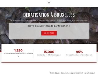 Dératisation Bruxelles