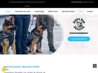 Agent de sécurité basé à Marseille
