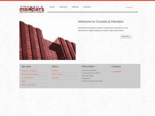 Agence Web Conseils & Mandats