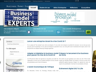 Business Model Experts