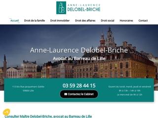 Consulter Maître Delobel-Briche, avocat au Barreau de Lille