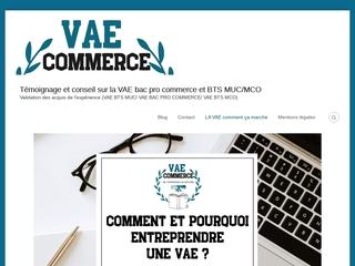 VAE : Validation de l'Acquis de l'Expérience