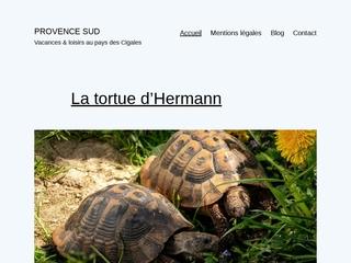 Découvrir autrement la Provence