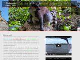 Chauffeur Guide Madagascar