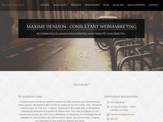 Consultant webmarketing Maxime Denizon